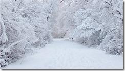 snowy_road-1366x768