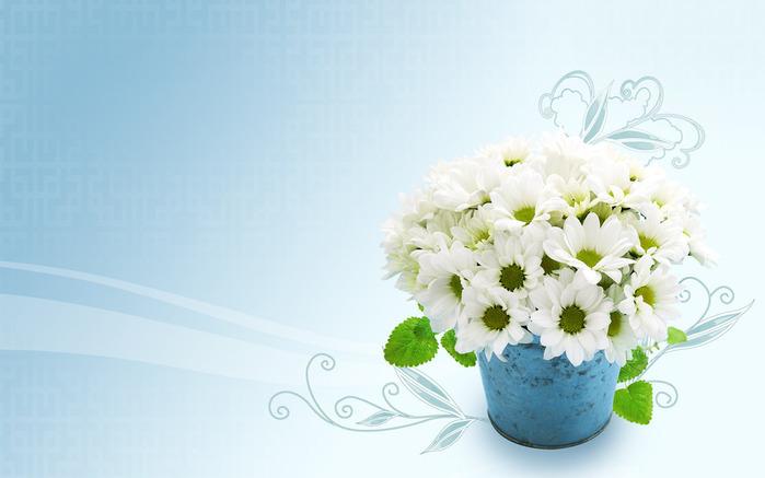 Цветы как открытка